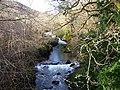 River Almond, Buchanty - geograph.org.uk - 323665.jpg