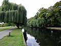 River Great Ouse, Bedford (40904071445).jpg