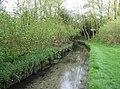 River Loddon - geograph.org.uk - 780530.jpg