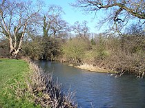 River Mole - geograph.org.uk - 686167.jpg