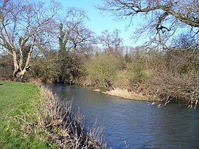 River Mole - geograph.org.uk - 686167.jpg
