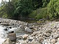 River South Tyne - geograph.org.uk - 213089.jpg