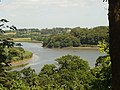 River Suir from Mount Congreve Gardens - geograph.org.uk - 216232.jpg