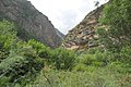 River Valley Chhimimaru Khola. - panoramio.jpg