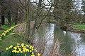 River Windrush - geograph.org.uk - 1826976.jpg