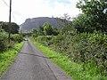 Road at Shesknan - geograph.org.uk - 1482563.jpg