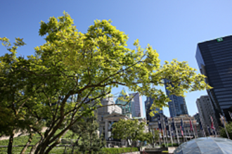 Robson Square - Robson Square Street
