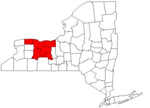 Rochester metropolitan area, New York - Image: Rochester, NY MSA