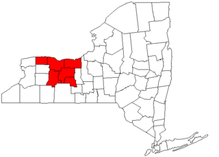 Rochester metropolitan area, New York Metropolitan area in New York, United States