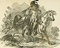 Rocky Mountain life; or, Startling scenes and perilous adventures in the far West, during an expedition of three years (1857) (14777526545).jpg