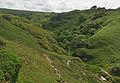 Rocky Valley, Tintagel (4951).jpg