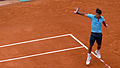 Roger Federer at the 2009 French Open 2.jpg