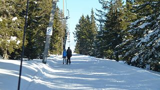 Rogla Ski Resort mountain