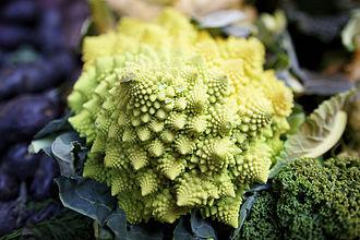 Romanesco broccoli - The Romanesco superficially resembles a cauliflower, but it has a visually striking fractal form