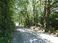 Rookley Highwood Lane 3.JPG