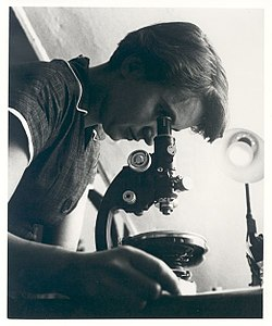 Rosalind Franklin with microscope in 1955