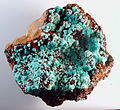 Rosasite - Graphic Mine, Magdalena District, New Mexico, USA.jpg