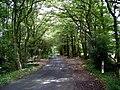 Rowhook Road - geograph.org.uk - 544707.jpg