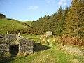 Ruins at mine museum, below Mynydd Pont-erwyd - geograph.org.uk - 589673.jpg