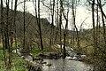 Ruisseau du pré Lefèbre.JPG