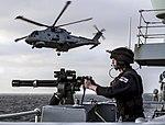 Russian cruiser Marshal Ustinov and HMS St Albans MOD 45165063.jpg