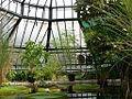 STRASBOURG-jardin-botanique.jpg