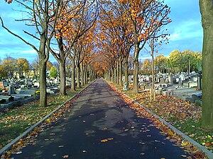 Saint-Ouen Cemetery - Image: Saint Ouen Avenue Transversale