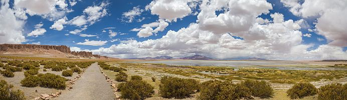 Panoramic view of the Tara Cathedrals (left) and the the Tara salt flat in the Atacama Desert, northern Chile.