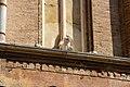 San Giacomo Maggiore - Particolare della facciata.jpg