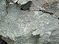 Sandorite lamprophyre (Sandor Dike, Neoarchean, 2.703 Ga; Route 17 roadcut northeast of Wasp Lake & north of Wawa, Ontario, Canada) 4 (48341418462).jpg