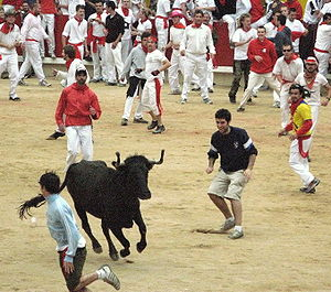 Sanfermines Vaquillas in Pamplona, Spain.
