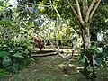 Sankyo Garden - DSC01023.JPG