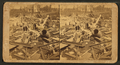 Scene showing how things were splintered where the storm was most severe, by Everett, James E., 1834-.png