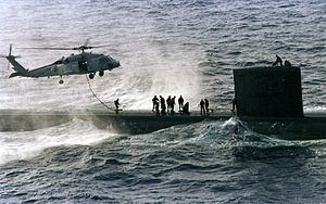 Seals are taken by a helicopter from a submarine.jpg
