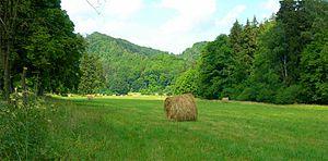 Selke (river) - The Selke Valley near Meisdorf. A retention basin is planned here.