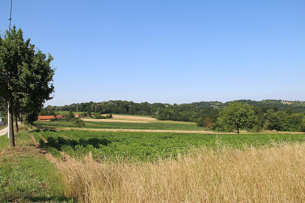 Selo Klinci - opština Valjevo - zapadna Srbija - Panorama 32
