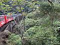 Serra do Mar - Serra Verde Express.JPG