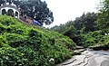 Side view of shoilopropat, bandarban.jpg