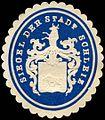 Siegelmarke Siegel der Stadt Schleiz W0223253.jpg