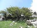 Sierra de los Tajos del Sabar (7232290998).jpg