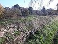 Silchester Roman city walls 20.jpg