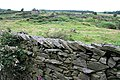 Slate wall on Cark Hall Allotment - geograph.org.uk - 502239.jpg