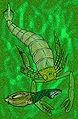 Slimonia acuminata.jpg