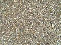 Small pebbles texture.jpg