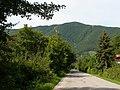 Smer Veľká Lodina - panoramio.jpg
