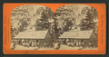 Snow's Hotel, Yosemite Valley, California, by Reilly, John James, 1839-1894.png