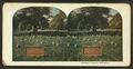 Soldiers' grave, Arlington, from Robert N. Dennis collection of stereoscopic views 2.png