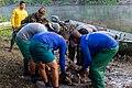 Soltura de peixe-boi, Amapá (48997852982).jpg