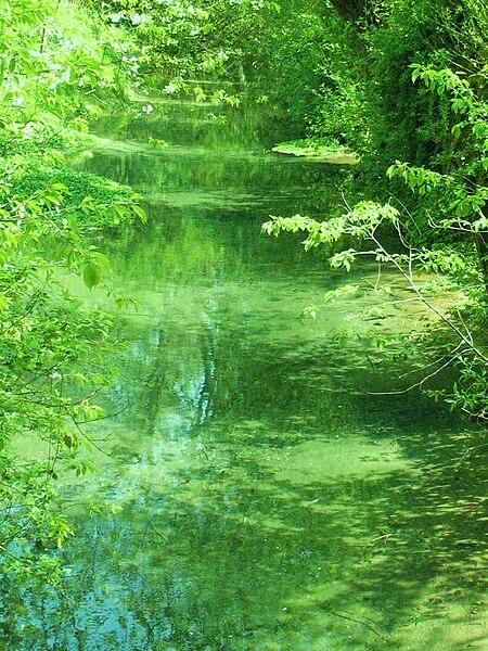 Fichier:Source de la rivière Hallue à Vadencourt (Somme).JPG