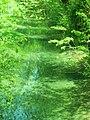 Source de la rivière Hallue à Vadencourt (Somme).JPG